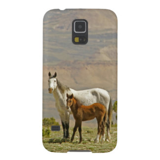 USA, Wyoming, Carbon County. Wild horse mare Galaxy S5 Cases