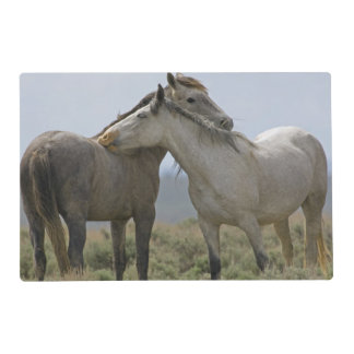 USA, Wyoming, Carbon County. Wild horses 2 Placemat