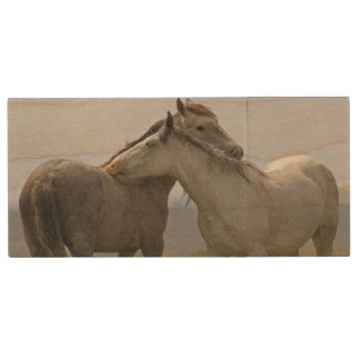 USA, Wyoming, Carbon County. Wild horses 2 Wood Flash Drive