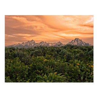 USA, Wyoming, Grand Teton National Park 1 Postcard