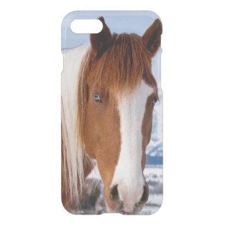 USA, Wyoming, Grand Teton National Park 3 iPhone 7 Case