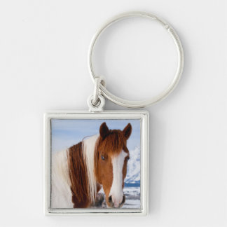 USA, Wyoming, Grand Teton National Park 3 Silver-Colored Square Keychain