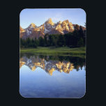 "USA, Wyoming, Grand Teton National Park. Grand Magnet<br><div class=""desc"">COPYRIGHT Christopher Talbot Frank / Jaynes Gallery / DanitaDelimont.com 