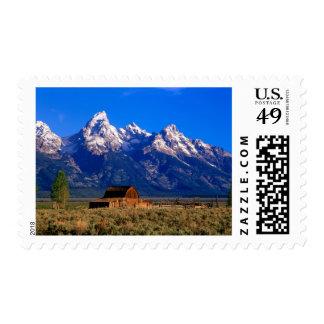 USA, Wyoming, Grand Teton National Park, Morning Stamps