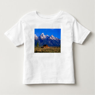 USA, Wyoming, Grand Teton National Park, Morning Toddler T-shirt