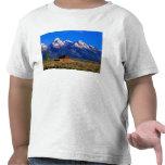 USA, Wyoming, Grand Teton National Park, Morning Shirt