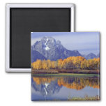 USA, Wyoming, Grand Teton National Park. Mt. 2 Inch Square Magnet