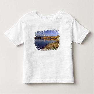 USA, Wyoming, Grand Teton National Park. Mt. 2 Toddler T-shirt