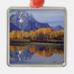 USA, Wyoming, Grand Teton National Park. Mt. Christmas Tree Ornament
