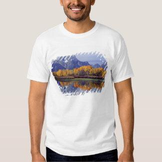 USA, Wyoming, Grand Teton National Park. Mt. Tee Shirt