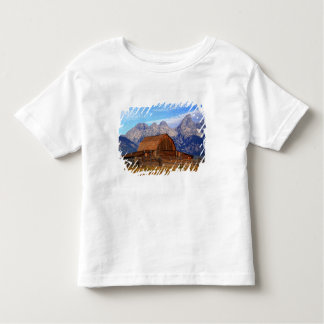 USA, Wyoming, Grand Teton National Park. Toddler T-shirt