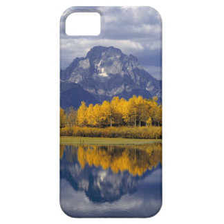 USA, Wyoming, Grand Teton NP. Against the iPhone 5 Cases