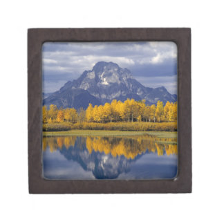 USA, Wyoming, Grand Teton NP. Against the Keepsake Box