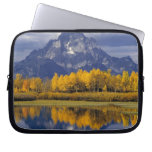 USA, Wyoming, Grand Teton NP. Against the Laptop Sleeves