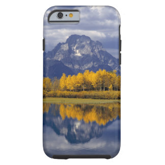 USA, Wyoming, Grand Teton NP. Against the Tough iPhone 6 Case