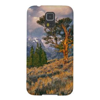 USA, Wyoming, Grand Teton NP. Sunrise greets a Galaxy S5 Case