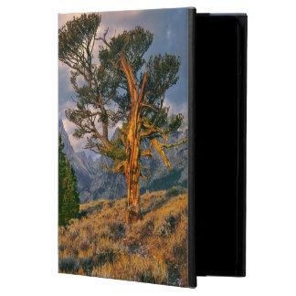 USA, Wyoming, Grand Teton NP. Sunrise greets a iPad Air Cover