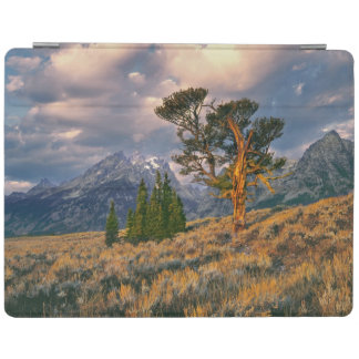 USA, Wyoming, Grand Teton NP. Sunrise greets a iPad Smart Cover