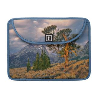 USA, Wyoming, Grand Teton NP. Sunrise greets a Sleeves For MacBooks