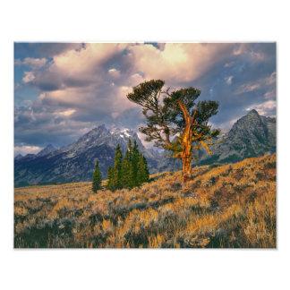 USA, Wyoming, Grand Teton NP. Sunrise greets a Photo Print
