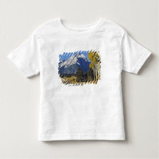 USA, Wyoming, Grand Teton NP. Teton Parkway Toddler T-shirt