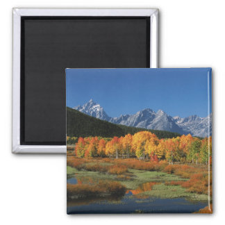USA, Wyoming, Grand Tetons National Park in Magnet