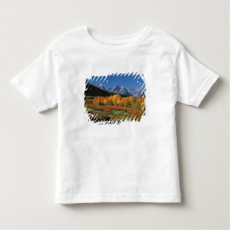 USA, Wyoming, Grand Tetons National Park in Toddler T-shirt