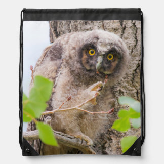 USA, Wyoming, Long-eared Owl chick Drawstring Bags