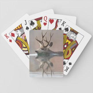 USA, Wyoming, Mule Deer buck swimming lake Playing Cards