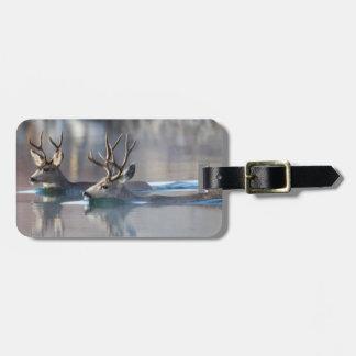 USA, Wyoming, Mule Deer bucks swimming lake Bag Tag