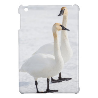 USA, Wyoming, National Elk Refuge, Trumpeter 2 Case For The iPad Mini