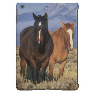 USA, Wyoming, near Cody Group of horses, Heart Case For iPad Air
