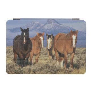 USA, Wyoming, near Cody Group of horses, Heart iPad Mini Cover