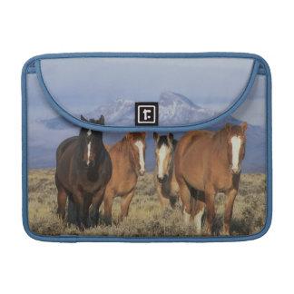 USA, Wyoming, near Cody Group of horses, Heart Sleeve For MacBooks