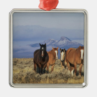 USA, Wyoming, near Cody Group of horses, Heart Metal Ornament