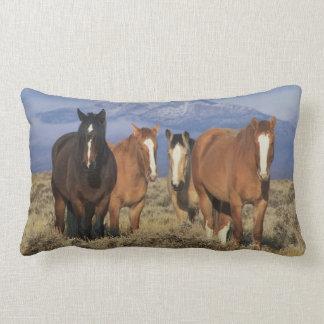 USA, Wyoming, near Cody Group of horses, Heart Throw Pillow