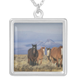 USA, Wyoming, near Cody Group of horses, Heart Silver Plated Necklace