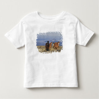 USA, Wyoming, near Cody Group of horses, Heart Toddler T-shirt