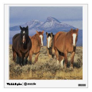 USA, Wyoming, near Cody Group of horses, Heart Wall Sticker