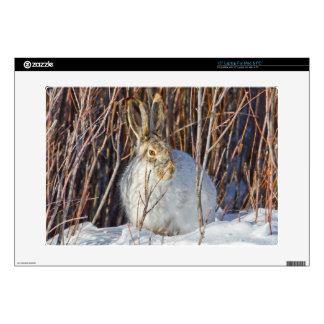 """USA, Wyoming, White-tailed Jackrabbit sitting on 15"""" Laptop Skin"""