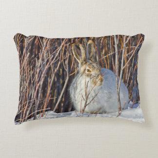 USA, Wyoming, White-tailed Jackrabbit sitting on Decorative Pillow