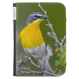 USA Wyoming Yellow-breasted Chat Icteria 2 Case For Kindle
