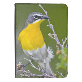 USA Wyoming Yellow-breasted Chat Icteria 2 Kindle 4 Case