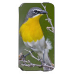 USA, Wyoming, Yellow-breasted Chat Icteria 2 iPhone 6/6s Wallet Case