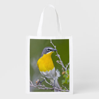USA, Wyoming, Yellow-breasted Chat Icteria 2 Grocery Bags