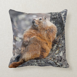 USA, Wyoming, Yellowstone National Park 1 Throw Pillow