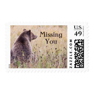 USA, Wyoming, Yellowstone National Park, Grizzly 2 Postage