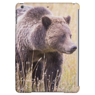 USA, Wyoming, Yellowstone National Park, Grizzly 3 iPad Air Cover