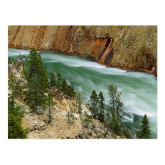 USA, Wyoming, Yellowstone National Park Postcard