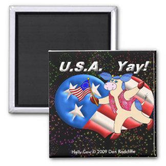 USA Yay! Magnets